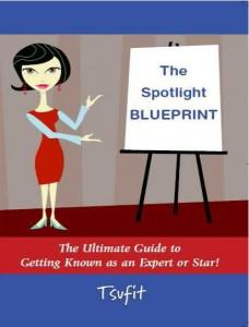 The Spotlight Blueprint Cover